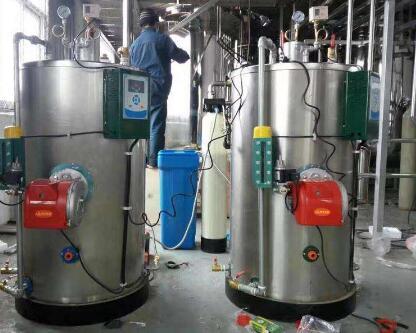 蒸汽发生器产品案例